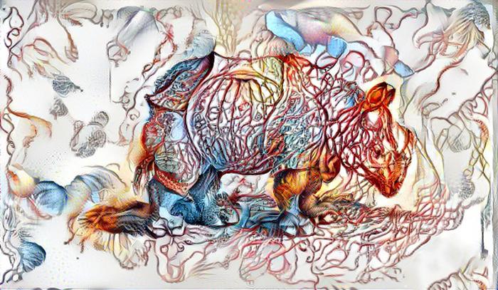 rhino2-1